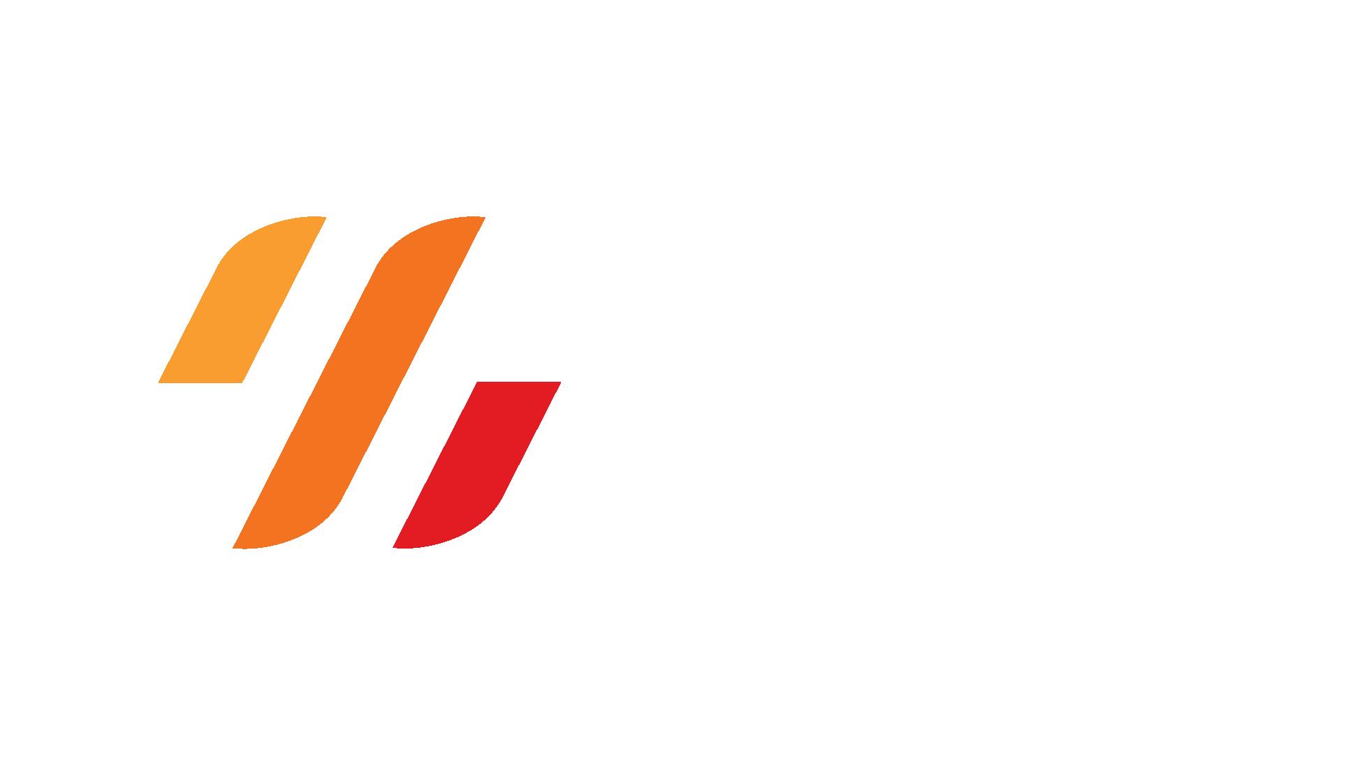 DSI_3c-rev-RGB.png