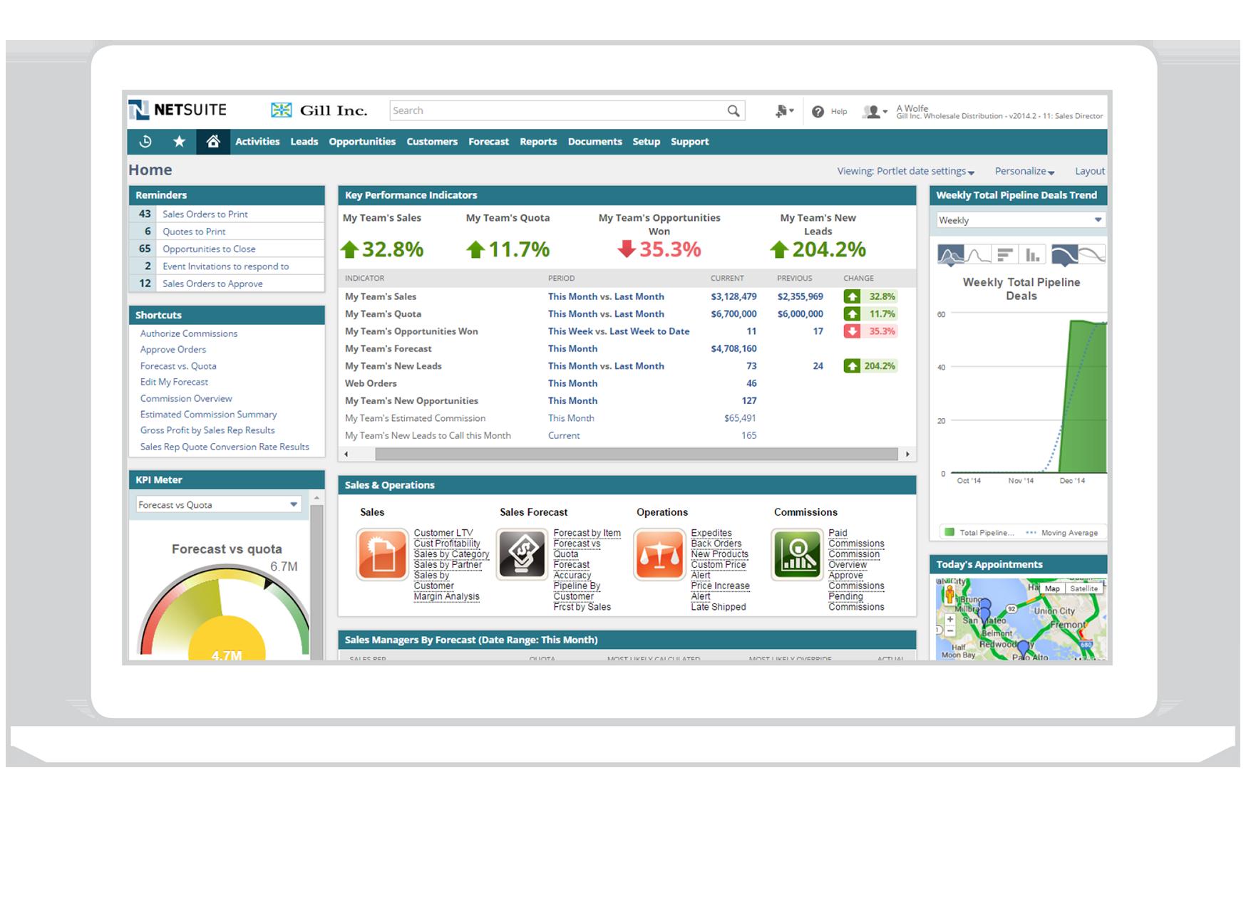 Meridian-NetSuite-Screenshot.png